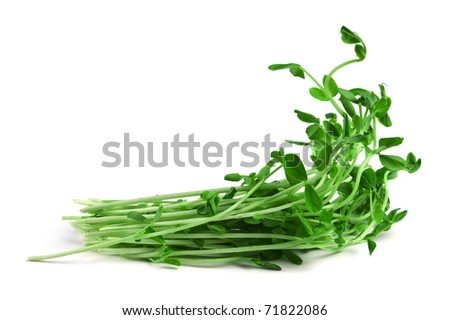 Healthy food.Snow Pea Sprouts isolated on white