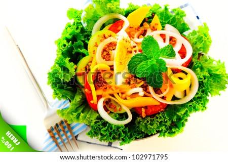 Healthy fresh salad with tomatoes, mango, egg, onion on white background as a studio shot - stock photo