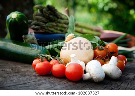 Healthy fresh vegetables ingredients for cooking in rustic setting: tomatoes, asparagus,zucchini,mushrooms,herbs and eggplant
