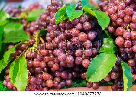 Healthy fruits red wine grapes background, Dark grapes, Blue grapes, Wine grapes