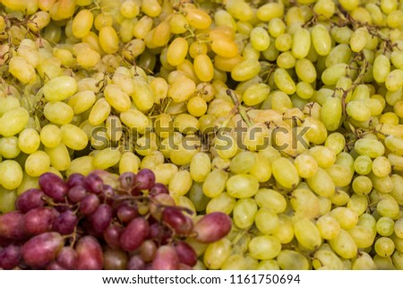 Healthy fruits Red wine grapes background/ dark grapes/ blue grapes/wine grapes,Red wine grapes background/dark grapes,blue grapes,Red Grape in a supermarket local market bunch of grapes ready to eat.