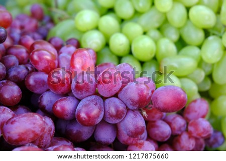Healthy fruits Red wine grapes background/ dark grapes/ blue grapes/wine grapes,Red wine grapes background/dark grapes,blue grapes,Red Grape in a supermarket local market bunch of grapes ready to eat #1217875660