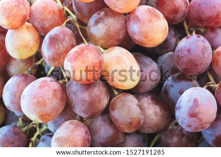 Healthy fruits Red wine grapes background/ dark grapes/ blue grapes/wine grapes,Red wine grapes background/dark grapes,blue grapes,Red Grape in a supermarket local market bunch of grapes ready to eat #1527191285