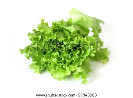 Healthy green salad isolated on white
