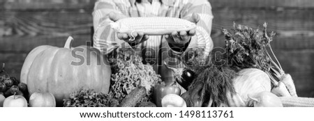 Healthy lifestyle. Farmer hold corncob or maize wooden background. Farmer presenting organic homegrown vegetables. Homegrown organic harvest benefits. Grow organic crops. Community gardens and farms.