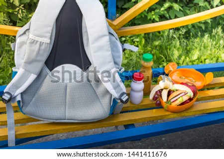 Healthy Lunches for schoolchildren. Backpack, lunch box with sandwiches, fruit and juice. School lunch.