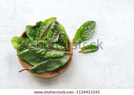 Healthy mangold (beet) green leaves with the red stalk. Top view. Concrete background.  #1134415241