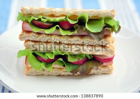 Healthy Sandwich in a lunch box