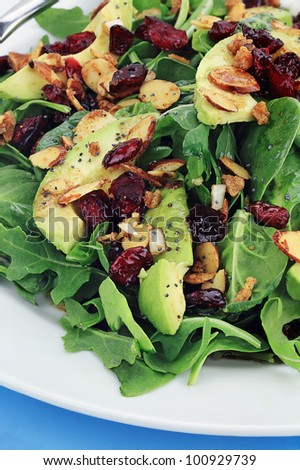 Healthy spinach and arugula salad with cilantro, dried cranberries, spiced almonds and avocados served with a lite vinaigrette. - stock photo