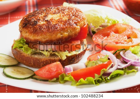 Healthy vegetarian burger sandwich with vegetable salad - stock photo