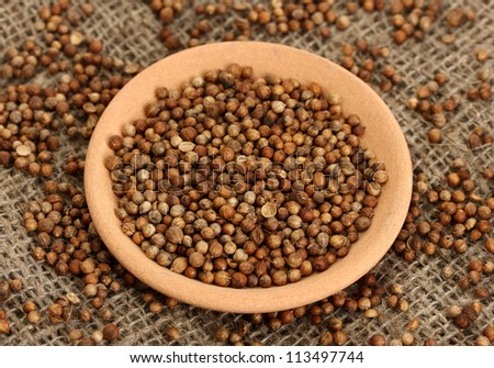 Heap coriander seeds in bowl on canvas background close-up
