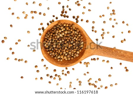 Heap coriander seeds in wooden spoon on white background close-up