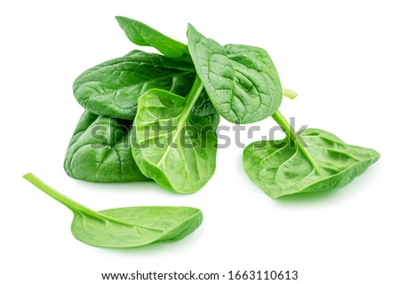 Heap of baby spinach leaves isolated on white background. Fresh green spinach.