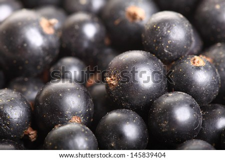 Heap of black currant. Textured background nature blackcurrant