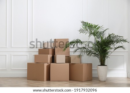 Heap of cardboard boxes and houseplant near white wall indoors. Moving day Stock photo ©