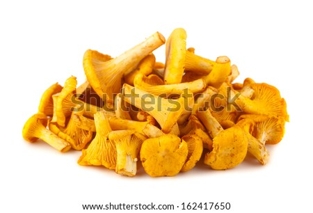 Heap of chanterelle mushrooms isolated on white background