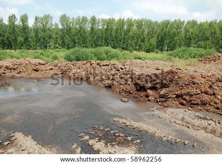 Heap of cow dung in field