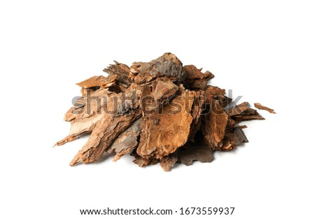 Photo of  Heap of Dry Pine Tree Bark Pieces Isolated on White. Broken Woods Nature Chip
