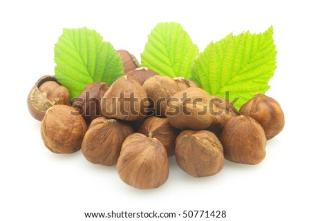 Heap of hazelnuts - stock photo