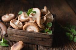 Heap of immunity boosting fresh Shiitake mushrooms in a bowl on rustic wooden background