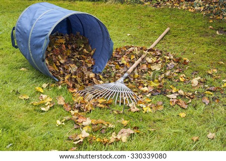 Heap of leaves, rake and fallen dirt bag on green garden lawn, garden works and cleaning in autumn.