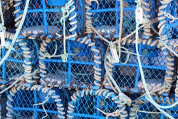 Heap of lobster pots in an harbor in Brittany