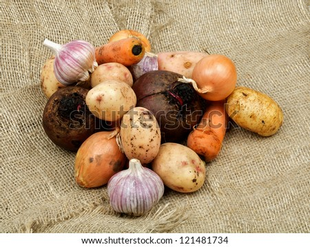 Heap of Raw Vegetables with Potato, Beet, Onion, Garlic and Carrot closeup on Sacking background - stock photo