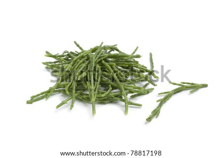 Heap of Samphire stalks on white background