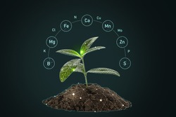 Heap of soil with specified components and young plant on dark background