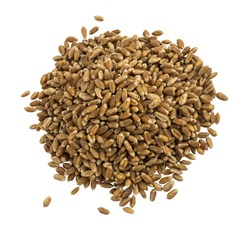 Heap Or Pile Of Dry Wheat Grains Isolated On White Background