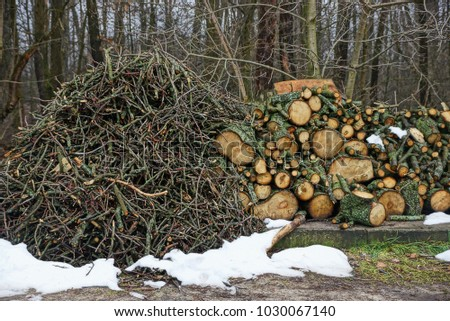 Heaps of brushwood and roundwood in the snow in the open air #1030067140