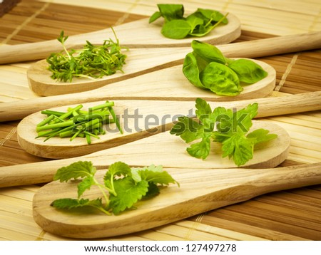 Heaps of herbs on wooden kitchen spoons