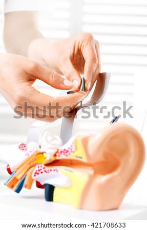 Hearing aid. The choice of hearing aid hearing care professional