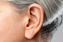 hearing, body part and old age concept - close up of senior woman ear