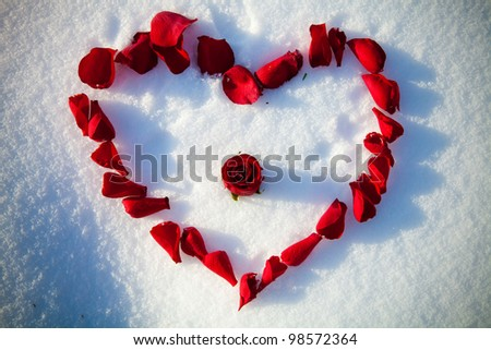 Heart from rose-petals on white snow.