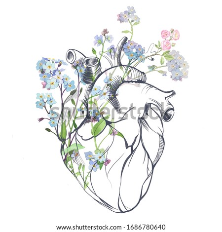 Heart in flowers. Anatomical heart, forget-me-not flowers and roses. Collage. Watercolor and digital graphics. Isolated white background. Stockfoto ©