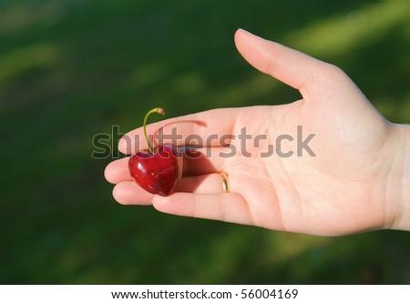 Heart in hand. Female hand holding heart-shaped cherry