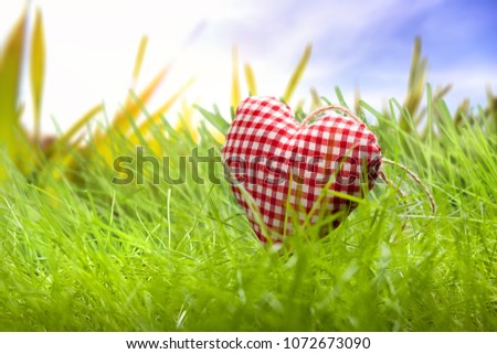 heart in the grass #1072673090