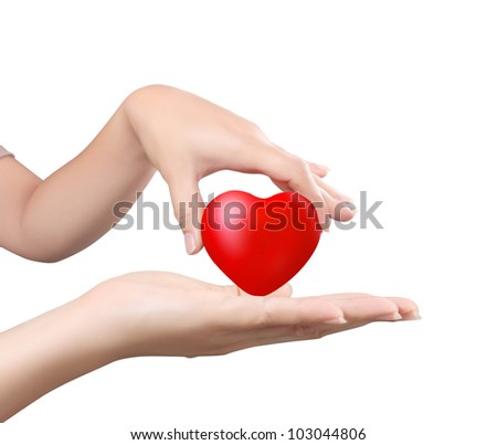 Heart in the hands isolated on white background