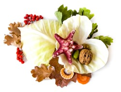 Heart- leaves cabbage,nuts,berries,flowers,unusual combinations of different fruits and element of decor.Health,Vitamins,Useful Plants,Nature, arvest,Autumn,Healthy Diet, Love.Vegetarianism, Tableware