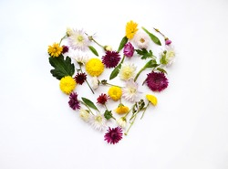 Heart made of flowers on white bright background, flat lay, top view. Spring concept. Pattern