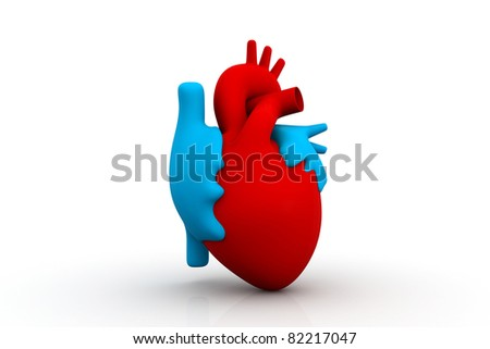 shutterstock red heart anatomy also as footage available