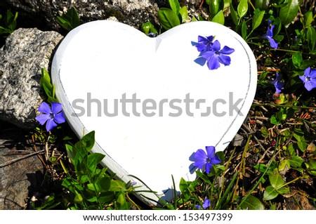 Heart meadow flowers love