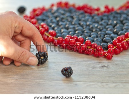 Heart of blueberries and red currants and hand holding blackberry