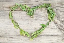 Heart of green leaves on a wooden background.Love background.