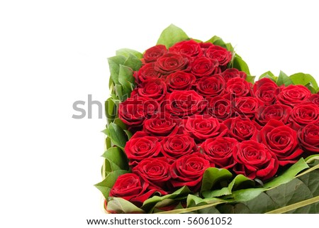 heart of roses, red roses