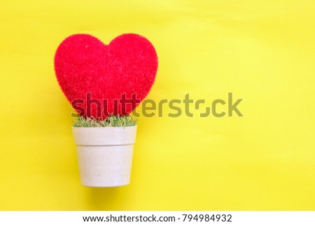 heart  on and pastel paper background #794984932
