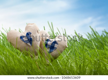 heart on grass #1068653609