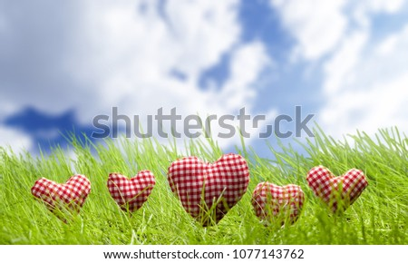 Heart on grass #1077143762
