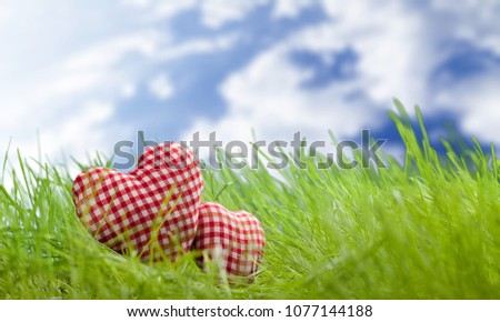 Heart on grass #1077144188